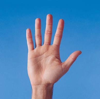 filosofi lima jari